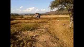 Tacomepai, lake and rice fields