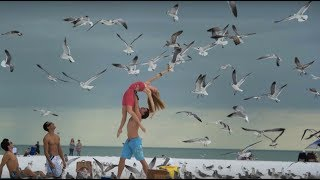 Dancers Among Us- Attack of the Seagulls