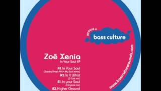Zoe Xenia - In Your Soul (Sascha Dive's NY In My Soul remix) HD