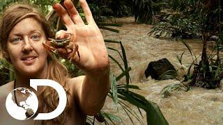 ¿Podrá Melissa sobrevivir en la selva panameña? | Supervivencia al desnudo | Discovery Latinoamérica
