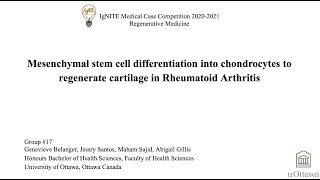 17_ Mesenchymal stem cell differentiation into chondrocytes to regenerate cartilage in RA