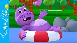 Dúo Tiempo de Sol & Canciones del Zoo - Tamito el Hipopotamito