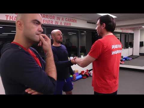 Chit Sau Exercise 1 - Systems Training - Wing Chun Kung Fu
