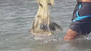 Serpme ile balık avı 2(Adam işi biliyor)