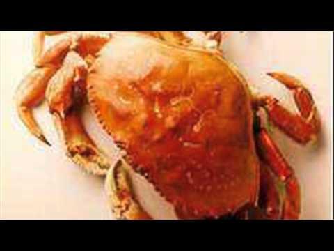 Crab Washington Regulations