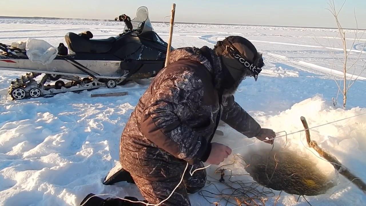 зимняя рыбалка хариуса на енисее видео Видео