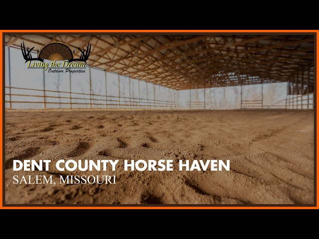 Dent County Horse Haven