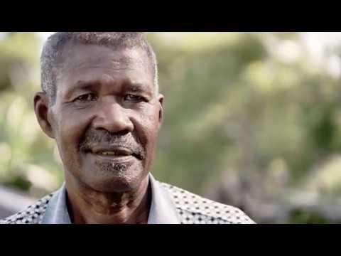 Projekt Madagascar fördert Kakaobohnen-Anbau – Bauer Felestin erzählt