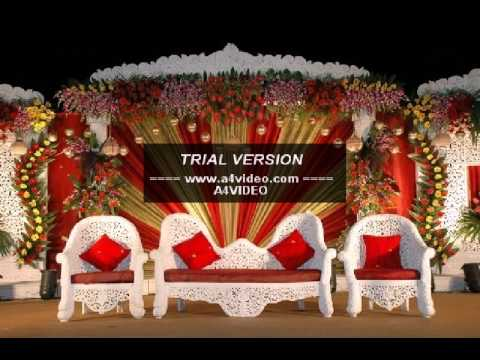 Wedding planner decoration 09878116885 event organisers phagwara wedding planner decoration 09878116885 event organisers phagwara ludhiana jalandhar junglespirit Choice Image