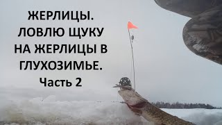 Рыбалка на жерлицы Зимняя рыбалка на щуку Сегодня щука поклевала