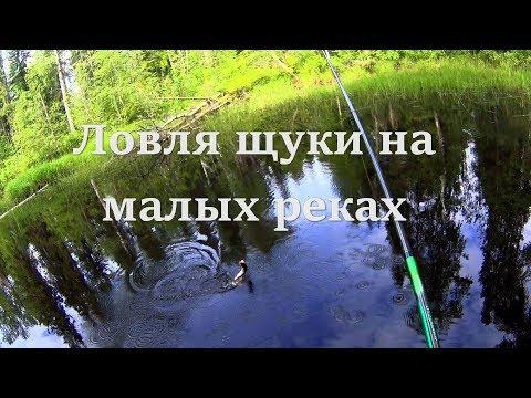 Ловля щуки на малых (лесных) реках, на блесну
