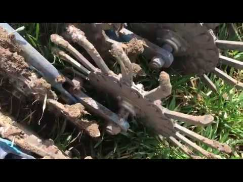 Борона мотыга (БМР), лучшее орудие для боронования пшеницы.