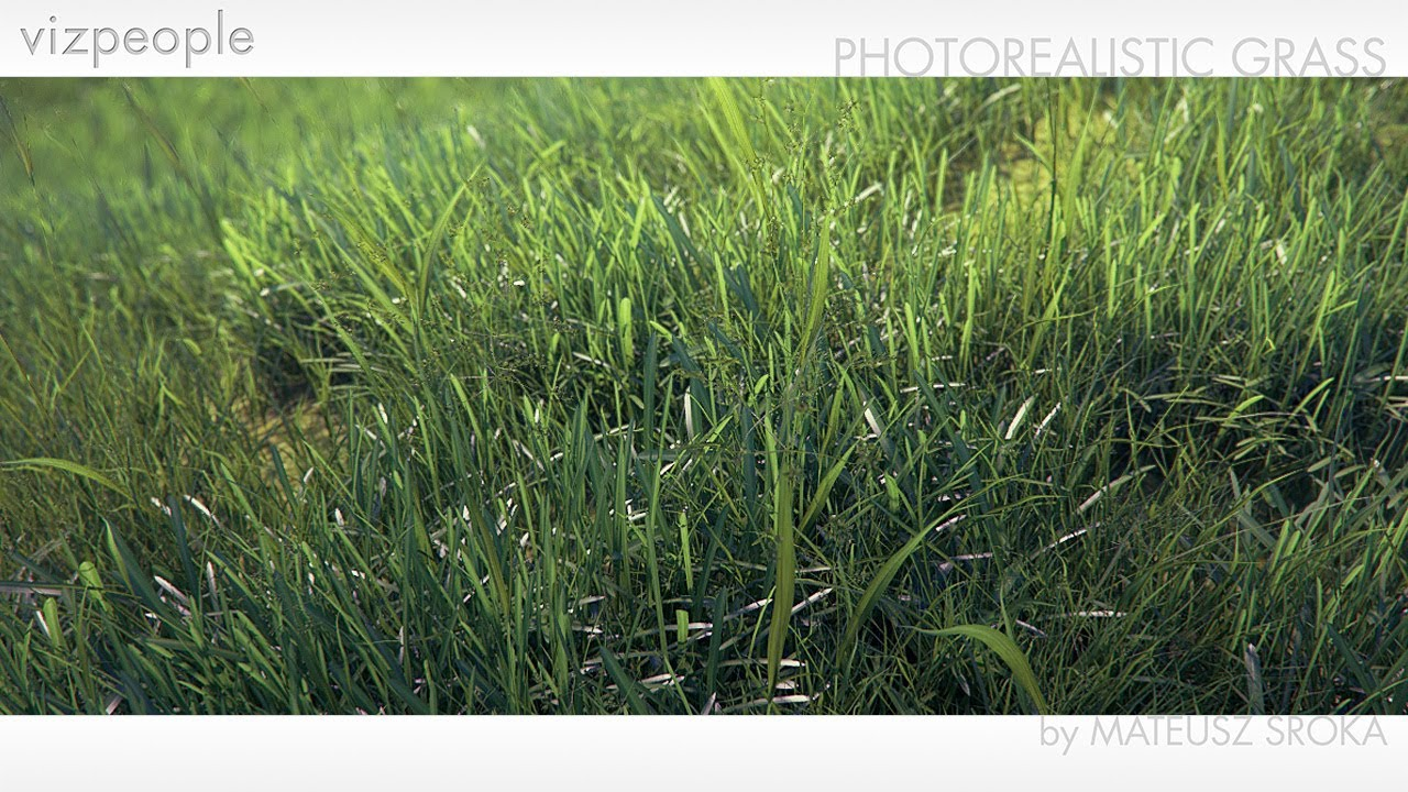 How To Create Photo Realistic Grass In 3dsmax And Vray