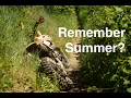 watch he video of 1st and 2nd Gear Single Track, Remembering Summer - Episode 217