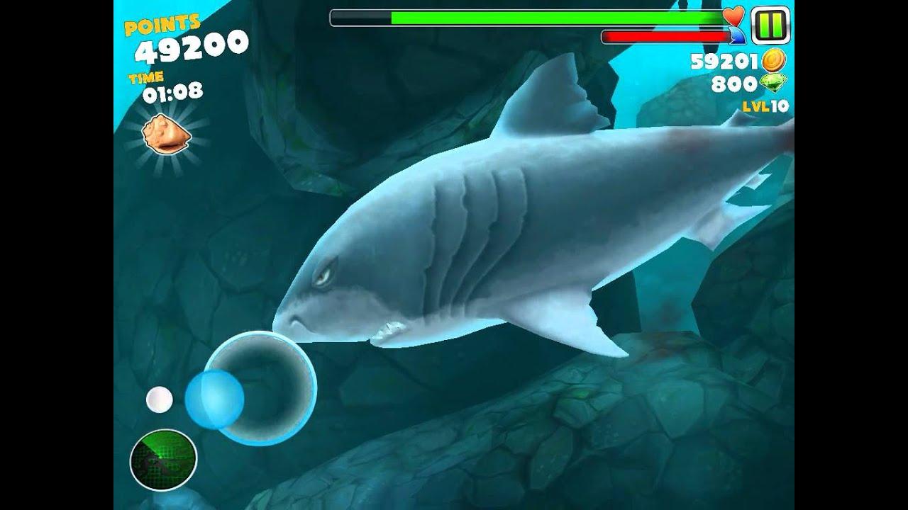 hungry shark evolution megalodon vs great white