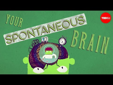 Video image: How spontaneous brain activity keeps you alive - Nathan S. Jacobs