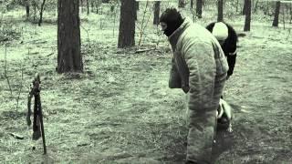 Американский бульдог Баста  Турнир Памяти собак