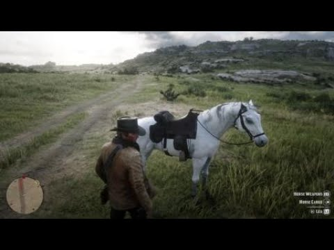 Red Dead Redemption 2: Money for the blind