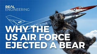 Why The US Airforce Ejected a Bear