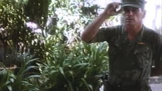 Heaven And Earth Trailer 1994
