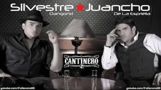 Silvestre Dangond - Volvi a Quererla [Cantinero] - Vallenato 2010*