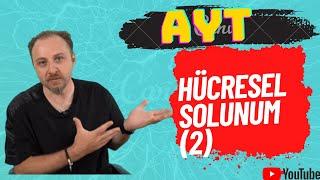 2021 YKS Biyoloji Özer Akgümüş   Hücresel Solunum 2