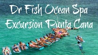 Dr  Fish Ocean Spa Excursion Punta Cana, Dominican Republic