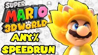 Super Mario 3D World Speedrun - First Attempt!