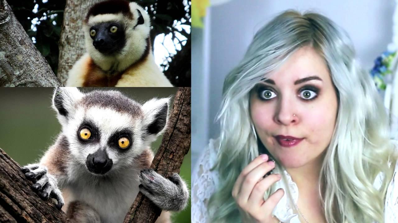 Jestem lemurem! ~ SELFIE TAG ~