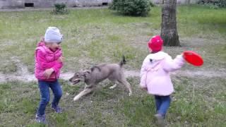 Варя с друзьями и собака играка-улыбака!!!