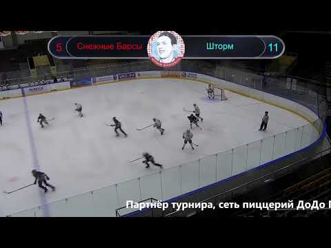 Снежные Барсы - Шторм Турнир ФХЭЛ  памяти Ионова 2005