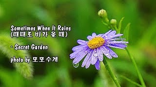 Sometimes When It Rains (때때로 비가 올 때)/ Secret Garden & photo by 모모수계