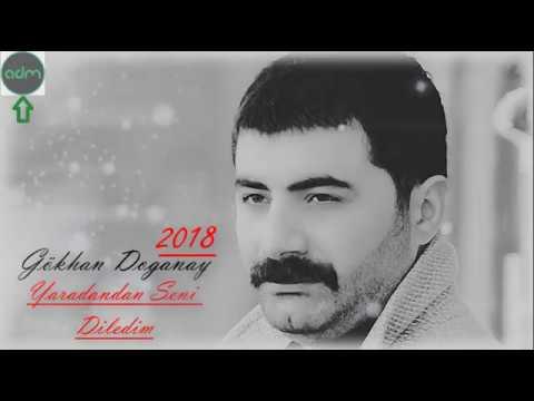 Gökhan Doğanay - Yaradandan Seni Diledim 2018