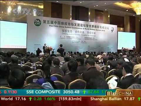 Rubber Development Forum Held in China