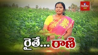 Mulberry Cultivation - Woman Farmer Shilpa Success Story | hmtv Agri