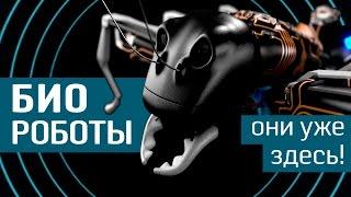 Биороботы: подсмотрели у природы -10 бионических существ от Geek to the Future - бионика и роботы