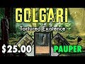 MTG - Golgari Tortured Existence - A $25 Pauper Deck for Magic: The Gathering