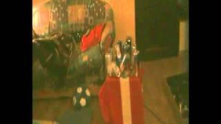 Waffe und Katze im Schussfeld