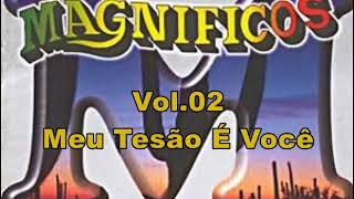 Magníficos - Meu Tesão É Você - Volume 2 ( Vol.02)