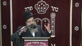 Thank You Hashem - The Road To A Brighter Future - Rabbi Elozor Baruch Bald Shlita