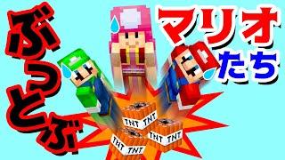 【ゲーム遊び】マイクラ TNTトランポリンでぶっとぶマリオとルイージとキノピコ マインクラフト【アナケナ&カルちゃん】Minecraft