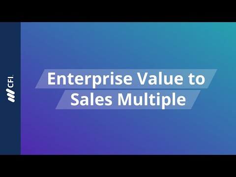 Enterprise Value (EV) to Revenue Multiple
