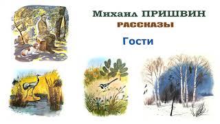 М.Пришвин AndquotГостиandquot - Рассказы Пришвина - Слушать
