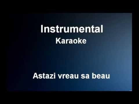 Astazi vreau sa beau - Instrumental / Karaoke - Nicolae Guta