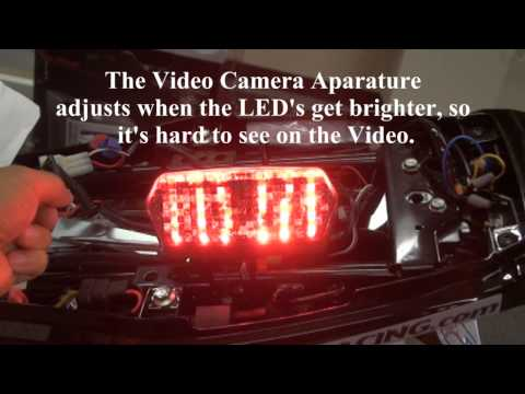 Grom LED Clear Tail Light with Integrated Turn Signals - Great Low Prices Hardracing