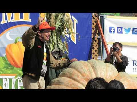 Martha Quinn - Wellness Shot: A Gardening Secret From The Pumpkin Festival Champ