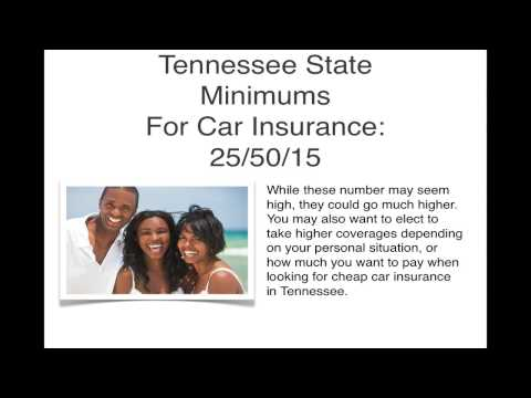 Get Affordable Auto Insurance In Tennessee