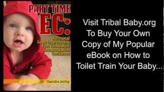How to Toilet Train Your Baby