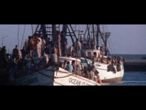 Scarface Theme Intro Movie.avi