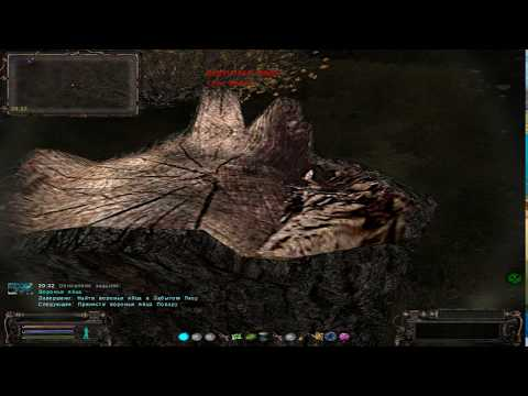 S.T.A.L.K.E.R. Народная Солянка ОП 2.1 : Вороньи яйца . Найти вороньи яйца в забытом лесу.